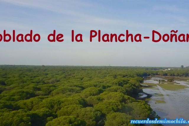 Poblado de la Plancha dentro del PN Doñana