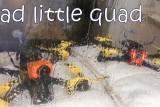 Sad little quad