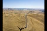 Windmills at Altamont Pass