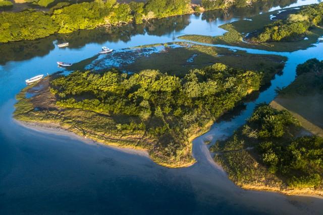 Tamarin estuary