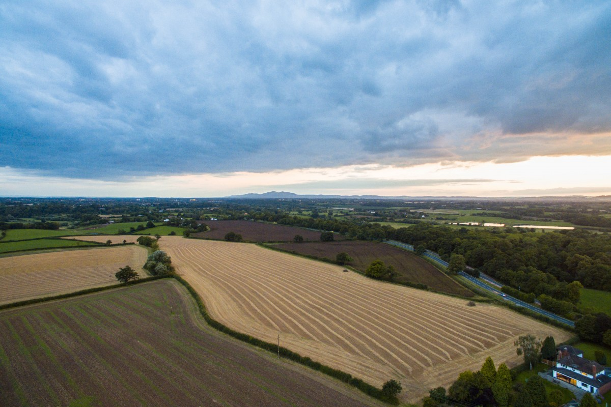 Worcestershire sunset, trees & shadows