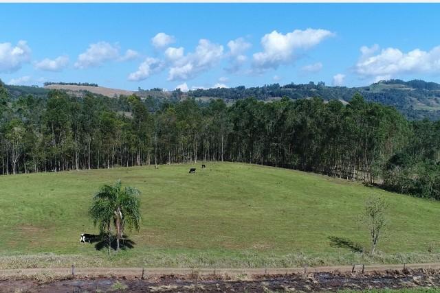 Zona rural de Palmitinho/RS