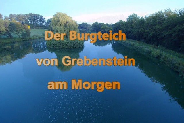 Morgens am Burgteich in Grebenstein