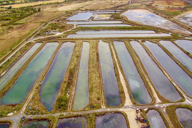 Bassins de claires à Chatelaillon Plage