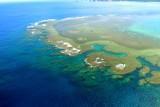 okinawa's reef