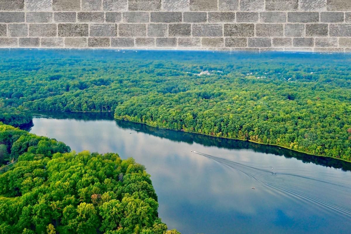 Burke Lake Wall Art