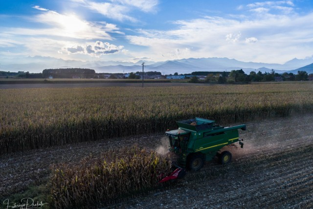 Farming in Italy