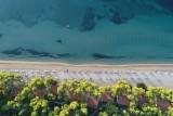 Lever du jour, Plage de l'île d'Eubée