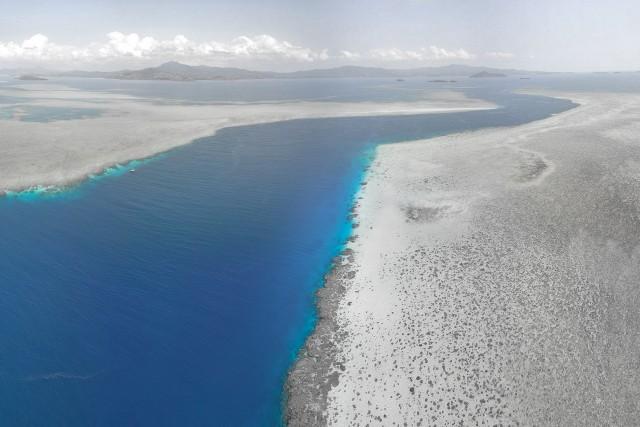 """Passe en """"S"""", le site de plongée le plus célèbre à Mayotte"""