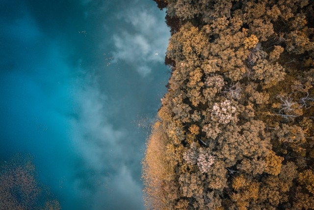 Aerial – Lake Meets Forest – Chiang Mai – Thailand