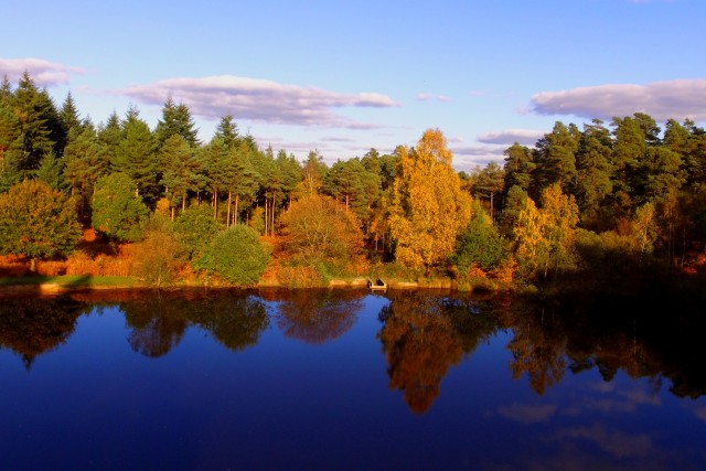 Autumn mirror in Hampshire, Uk