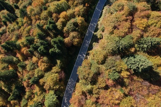 Fall in Italy – Trentino – Tesino