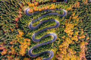 Infinite Road to Transylvania #11