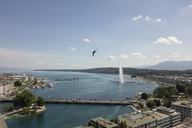 Geneva with the jet d'eau