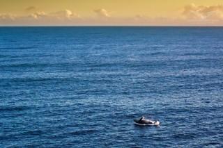 Whales season in Reunion Island