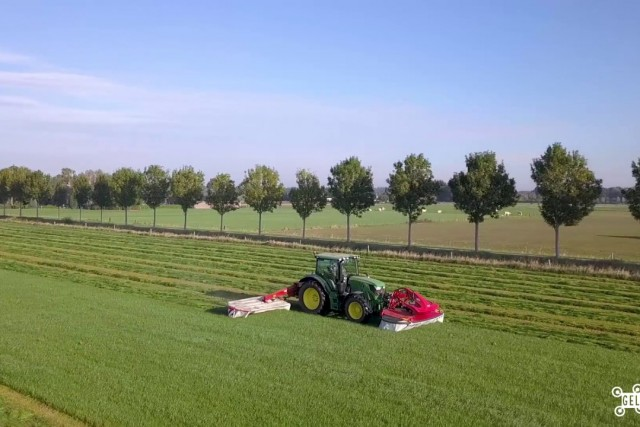 Farmers cutting and shaking out grass