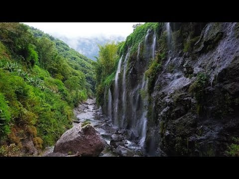 River and Waterfalls – Salazie (Reunion island)
