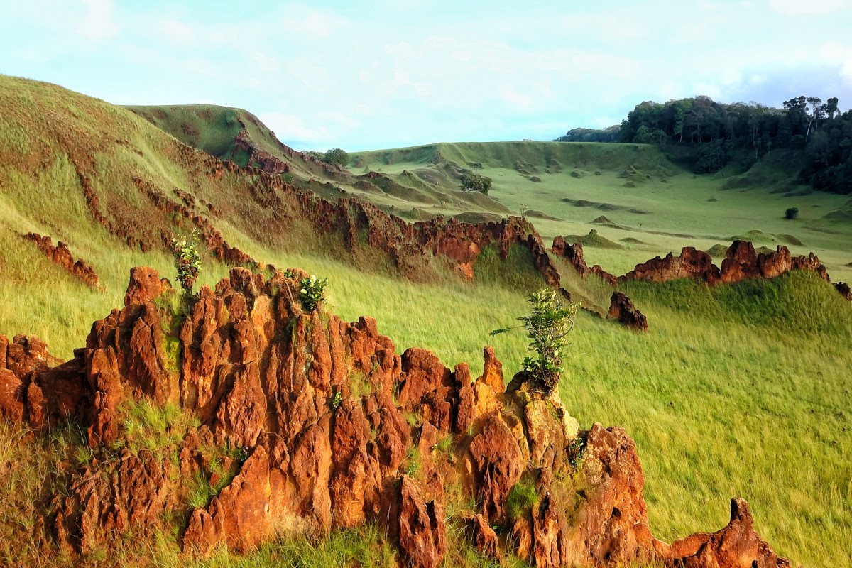 Survol de la plaine aux images région de nyonié au Gabon.