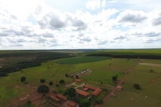 Araras Farm