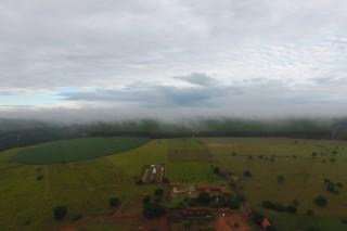 Araras Farm 2