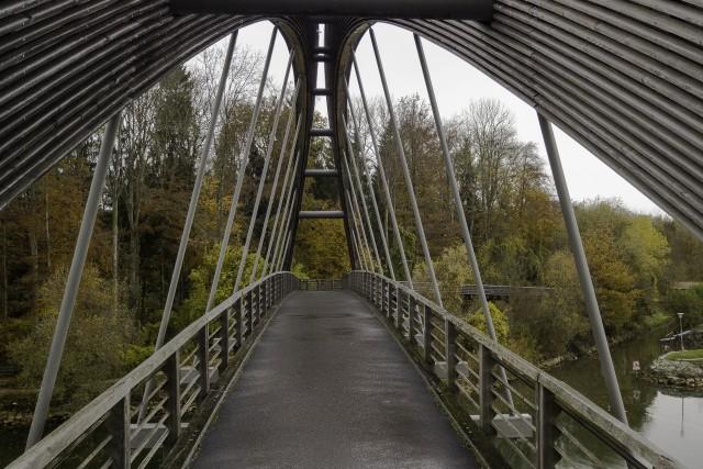 Autumn Leaves Bridge