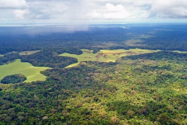 Plaine aux images Nyonié Gabon