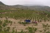 Bodega Abel Mendoza, Rioja, Spain