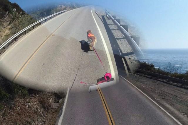 Limekiln Biking, part 3