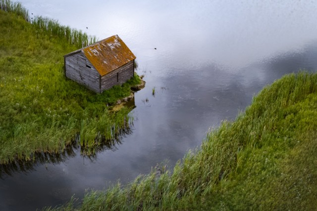 little house behind dronesta