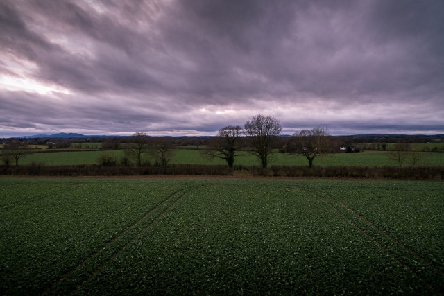 Worcestershire countryside