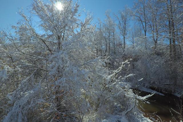 Snow in Georia USA
