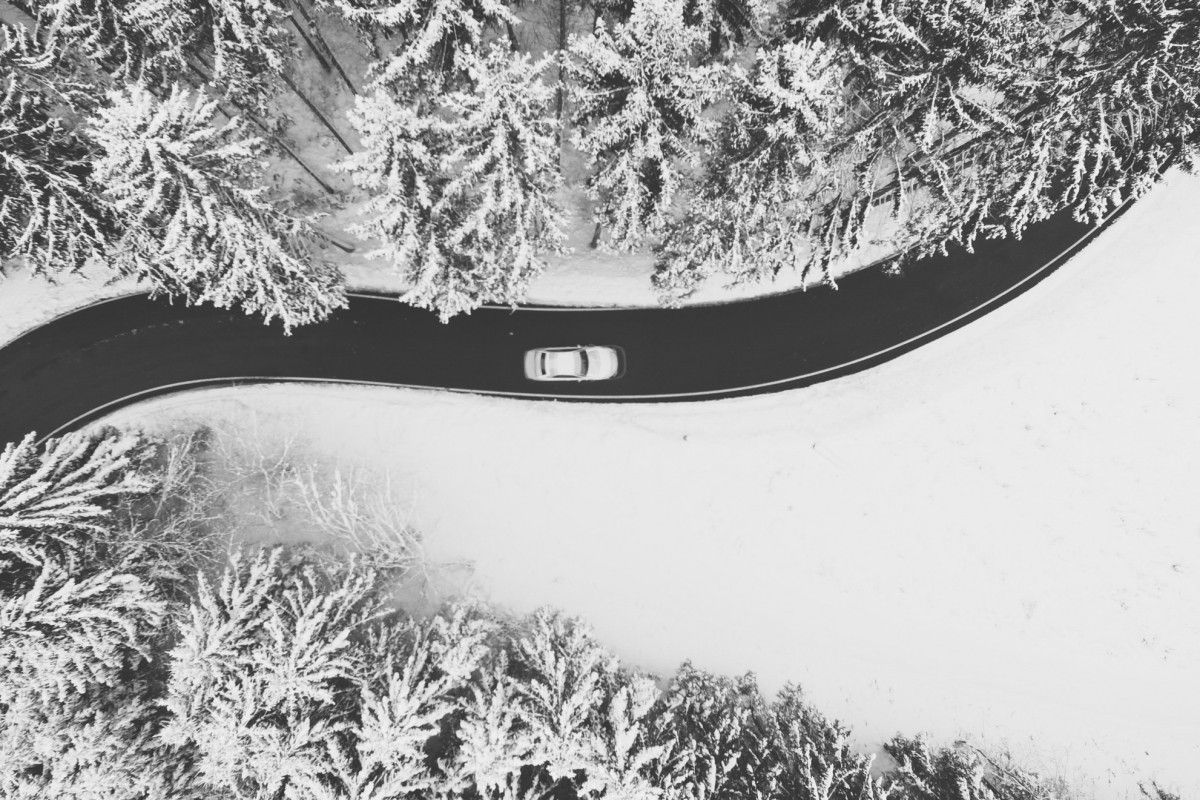 White car passing throught the snow trees