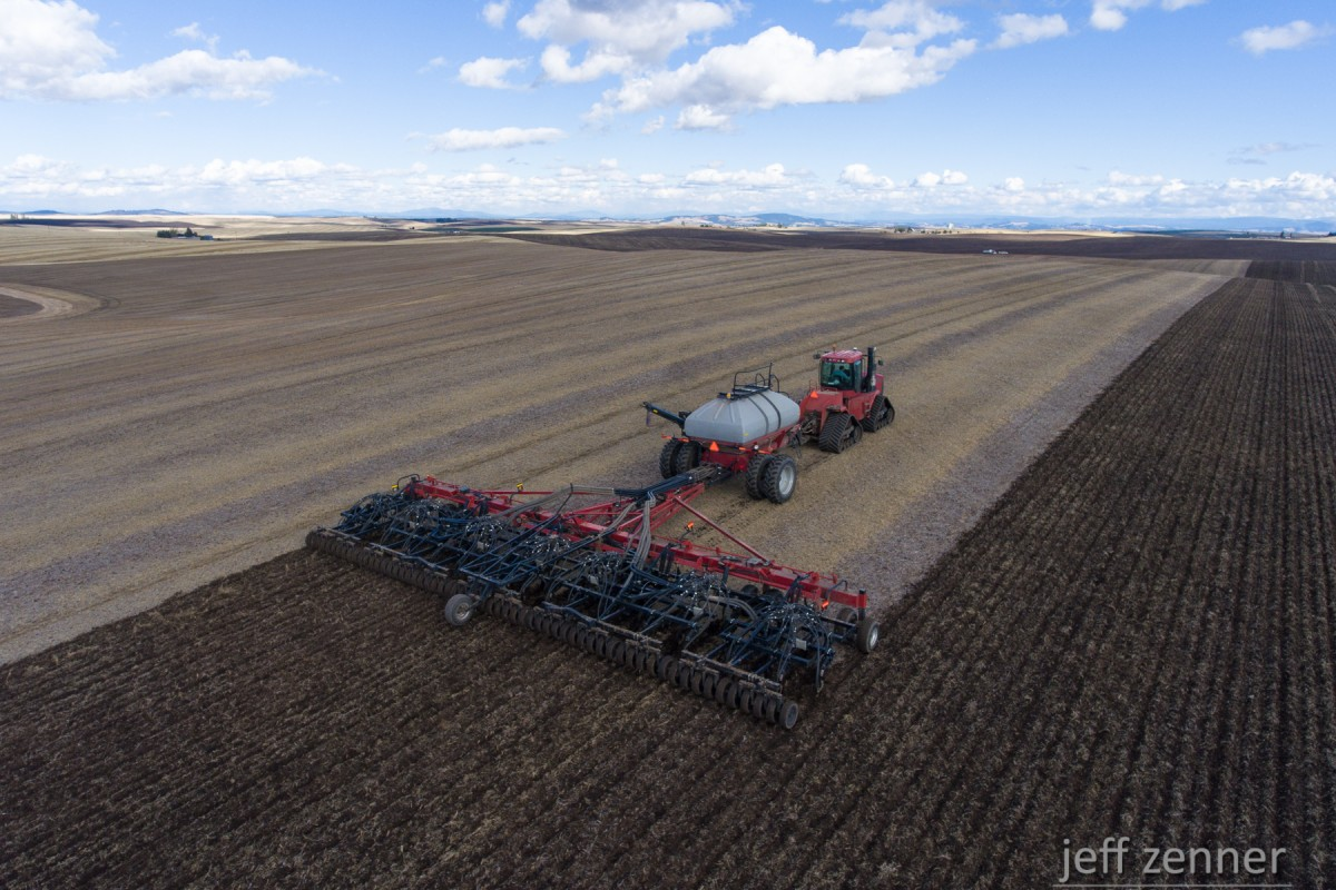 Planting Wheat!