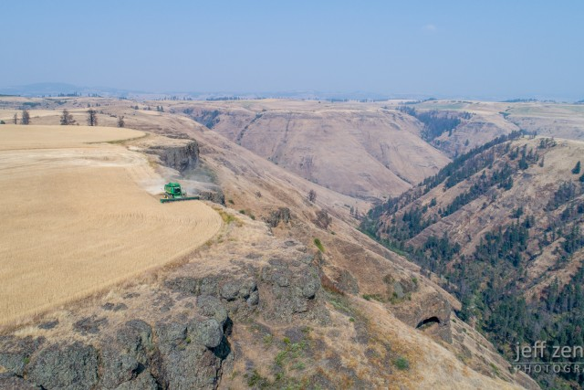 Harvesting Along the Edge of the Canyon!