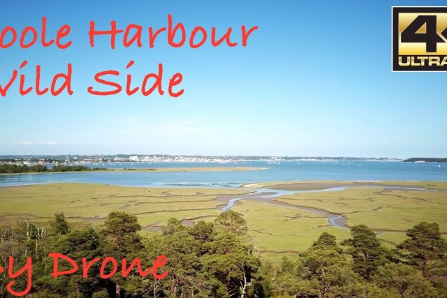 Poole Harbour – Wild Side 4K