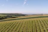 Rathfinny Wine state.