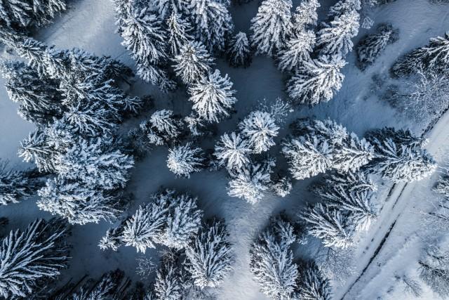 Paysage hivernal (Suisse) (Neuchâtel)