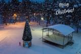 Christmas in Syasstroy
