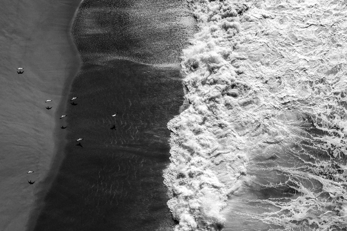 Seagulls Over Sand