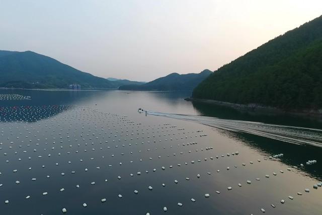 Wake spot, Goeje, South Korea