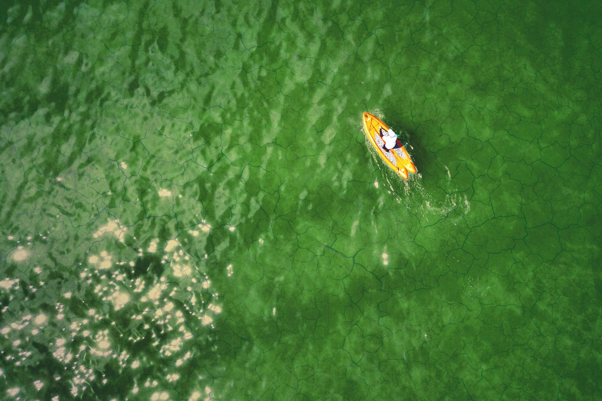 Paddle Boarding through green jello