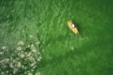 Paddle Boarding through green jello