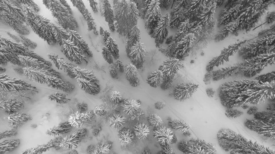 Jura mountain in winter