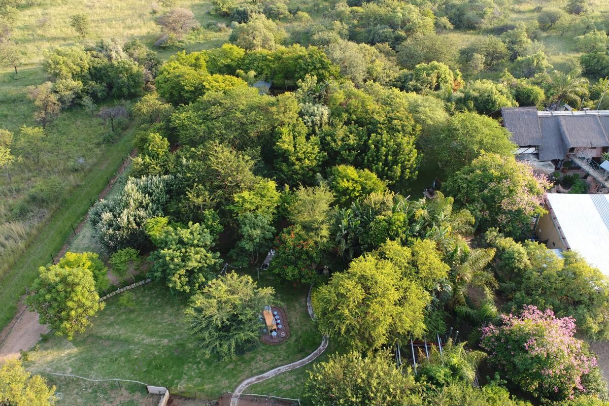 Kameelfontein, Pretoria, Gauteng, South Africa. Small holding, Garden.