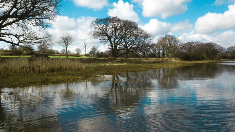 River Stour High Tide in Spring -2