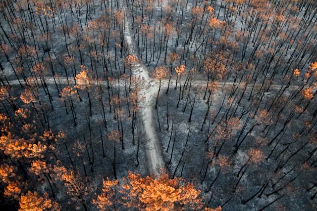 Burn cross