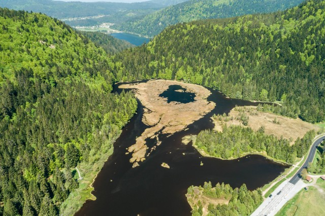 Tourbière du lac de Lispach