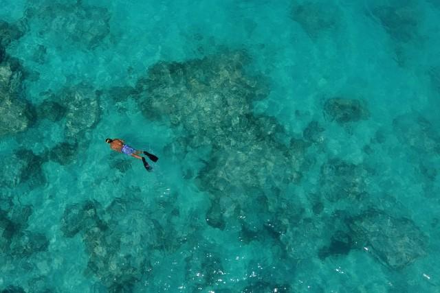 Snorkelling Solitude