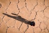 Droning in the Salt desert!