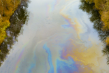 Gasoline pollution on river
